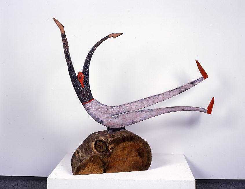 키아라 라파치니(Chiara Rapaccini) 아즈미노(安曇野)에서의 체조 2002년
