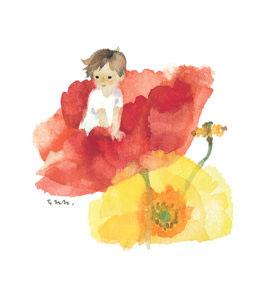 いわさきちひろ けしの花のなかのあかちゃん 1960年代後半