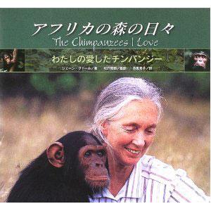 アフリカの森の日々 わたしの愛したチンパンジー